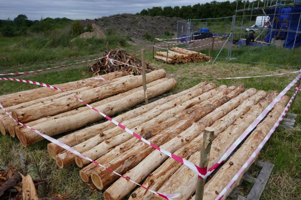 Larch poles