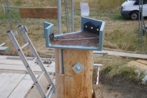 Larch pole and steel work